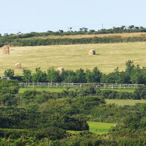 Bed and breakfast with a view near Helston